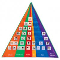 Food Pyramid Pocket Chart with Cards LER 2494
