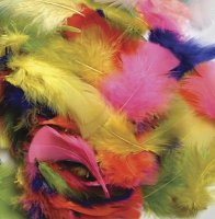 Feathers - Bright Hues -125 Pcs CK-4500-1