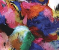 Feathers - Hot Colors - 125 Pcs CK4500-2