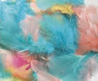 Feathers - Country Colors - 125 Pcs CK4500-04