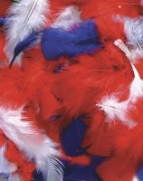 Feathers - Patriotic Colors - 125 Pcs CK4500-06