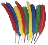 Quill Feathers - Multi Colored (6 FEATHERS)- Assortment CK-4501