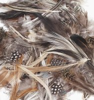 Natural Feathers Assortment - 1/2 Oz CK- 4514