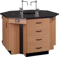 "4-Student Octagon Island Table with Sink -- 3/4"" Black Epoxy 84072 K36 (25)"