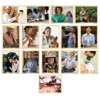 Community Careers Set of 15 Puzzles D54-1286