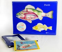 Perch Model Activity Set Grades: 5 - 12 AEP-2754