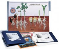 Germination Model Activity Set Grades:5-12 AEP- 2850