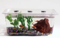 1/2 Gallon Student Aquaria/Terraria, Tank and Cover AEP 9433