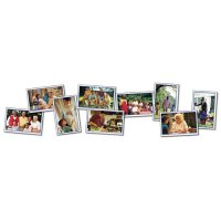 Families Photographic Learning Cards (A15-KE845016)