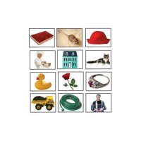 Rhyming Pairs Photographic Learning Cards (A15-KE845014)