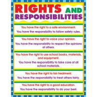 Rights and Responsibilities Chart A15-6305