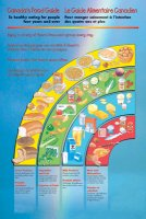 Canada Food Guide Poster