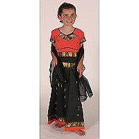 Multicutural Costume (Indian Girl )