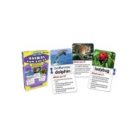Slide & Learn Flash Cards Animal Fun Facts TC6563