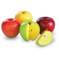 Magnetic Apple Fractions Item # LER 0904