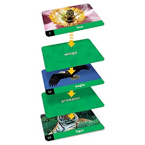 Linkology™ Animal Card Game LER 2890